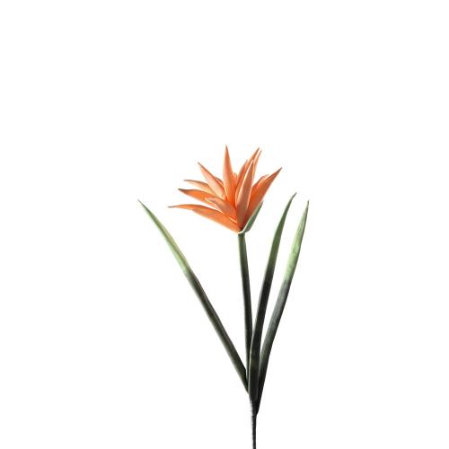 Ananasblume, orange. 6 Stück.