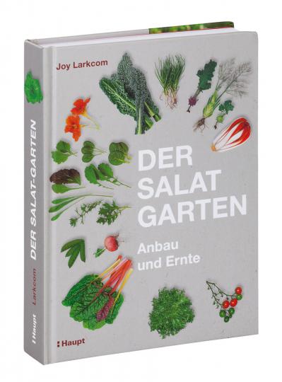 Der Salat-Garten. Anbau und Ernte.