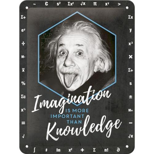 Blechschild »Imagination is more important«.