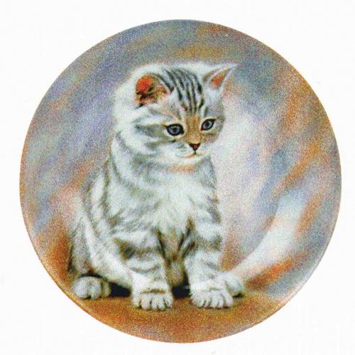 Frühstücks-Set »Getigertes Kätzchen«.