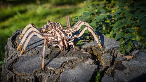 Holzbausatz »Krabbelnde Spinne«.