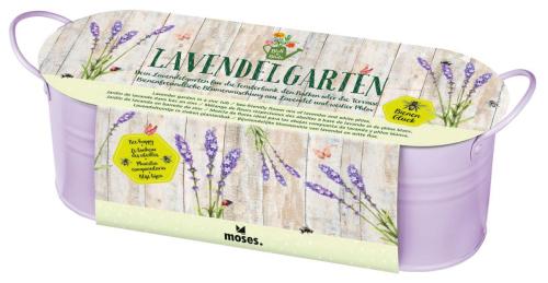 Lavendelgarten in Zinkwanne »Bienenglück«.