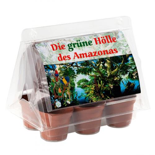 Mini-Gewächshaus »Amazonas«.
