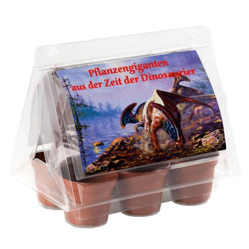 Mini-Gewächshaus »Dinosaurier«.