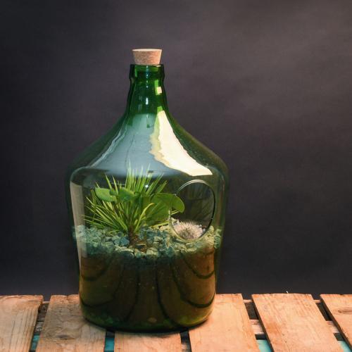 Offene Terrariumflasche 10 l.
