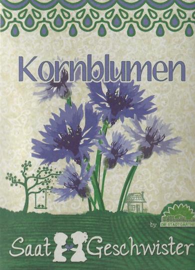 Saatgut Kornblumen (Centaurea cyanus).