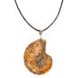 Ammonit-Anhänger. Gesägt und poliert. Bild 1