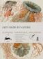 Geschenkpapier Kunstformen der Natur. Bild 1