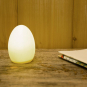Kleine LED-Lampe in Ei-Form. Bild 1