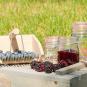 Traditioneller Beerenpflücker. Bild 1