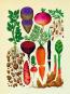 Das Museum der Pflanzen. Postkartenbuch. Bild 2