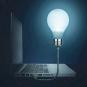 Glühbirne für den Laptop. Bild 2