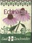 Saatgut Scheinsonnenhut (Echinacea purpurea). Bild 2
