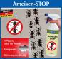 Ameisen-Stop-Spray, 500 ml. Bild 3