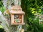 Eichhörnchen-Futterhaus. Bild 3