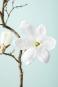 Große Magnolie aus Kunststoff. Bild 3