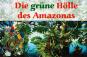 Mini-Gewächshaus »Amazonas«. Bild 3