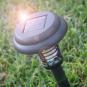Solar-Gartenlampe zur Mückenabwehr. Bild 4