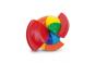 Rainbow Nautilus. Bild 4