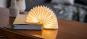 Akkordeon-Lampe. Bild 5
