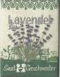 Saatgut-Set Scheinsonnenhut und Echter Lavendel. Bild 5