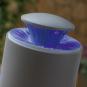 Anti-Mücken-Sauglampe. Bild 6