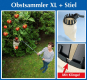 Obstsammler XL mit Teleskopstiel. Bild 6