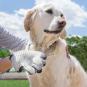 Bürsthandschuh für Haustiere. Bild 7