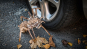 Holzbausatz »Krabbelnde Spinne«. Bild 7